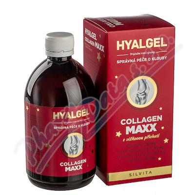 Hyalgel Collagen MAXX 500 ml VIŠEŇ vánoční 2020